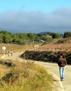Camí del Coll de Banyuls